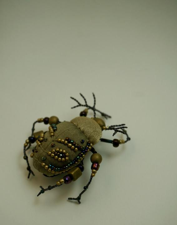 scarabée or et pétrole