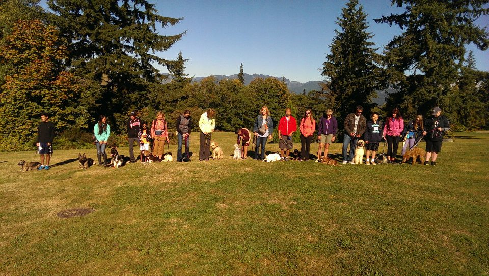 Summer Weekend Obedience Walk