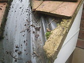 Gutter cleaning and roofing repairs middlesbrough