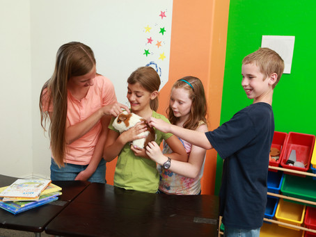 Animals in Classrooms – where my anthrozoological interest started