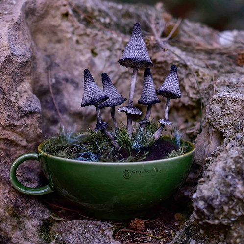 Pin Cushion Mushrooms Cup