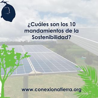 mandamientos de la sostenibilidad-32.png