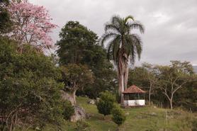 Campamento solar_Naturaleza_conexion a t