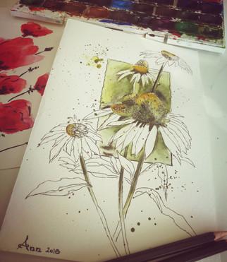 watercolour sketching