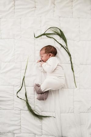 Lillyanna, Kempten, Buchenberg, Newborn, Neugeborene, Fotografie, Fotograf, Foto, Shooting, Pur, Weiß, Minimalistisch, Bea, Beatrix, Haas, Studio