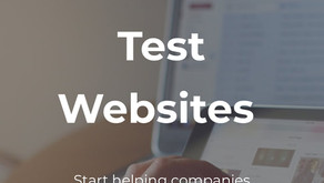 What Users Do - Paid Website Testing Market Research
