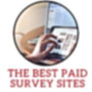 The Best paid survey sites.png