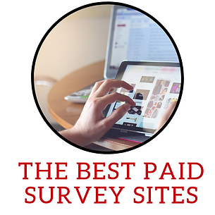 The Best paid survey sites.png