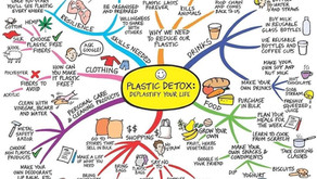 Be More Eco-Friendly in 2020, With A Plastic Detox