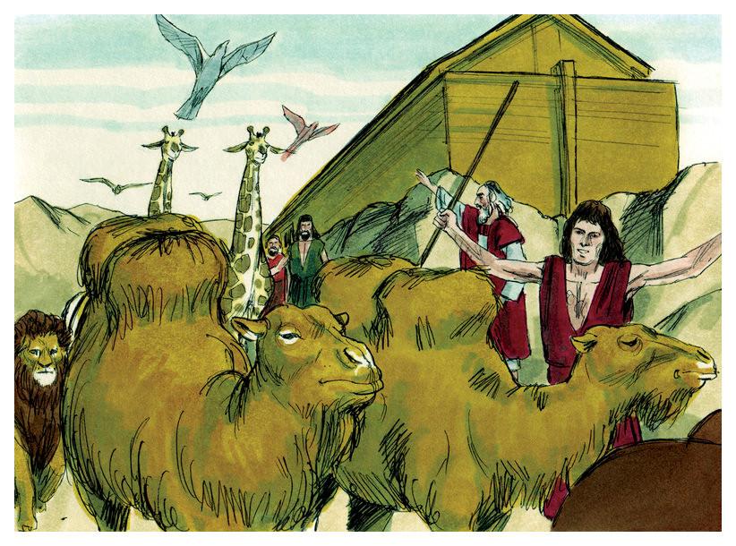 Noah and the Animals Adaptation