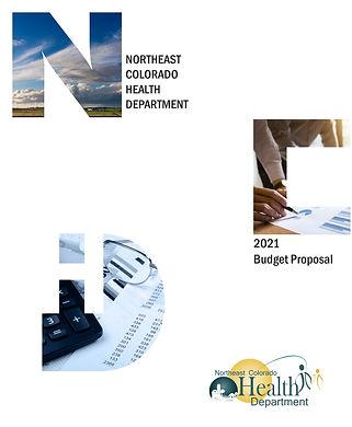 REV1_2021 Budget Proposal_09-10-20_Page_