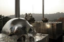 skull alu05.jpg