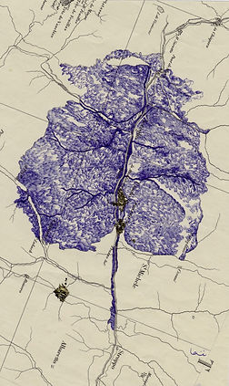 cartographie-des-arbres-nc2b02-1.jpeg