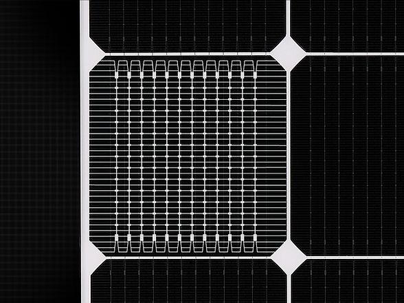 LG-Solar-Neon-2.jpg