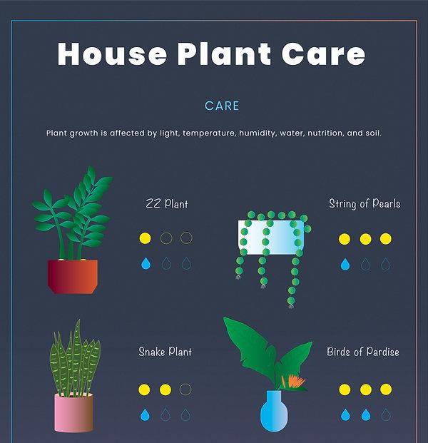 1 plant.jpg