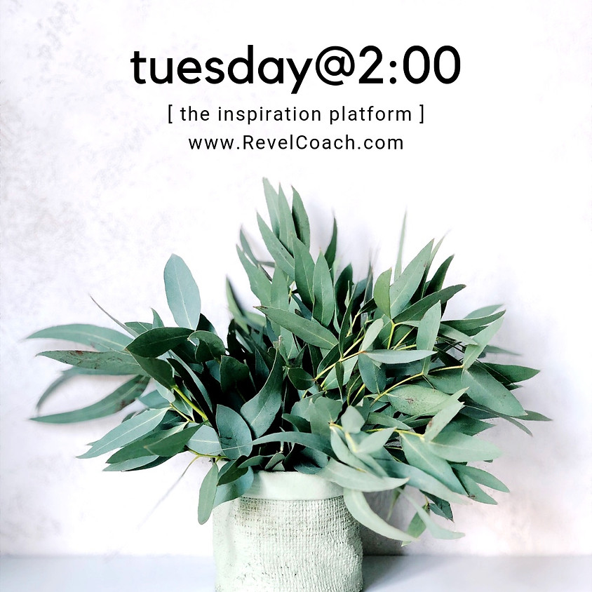 May 28th Tuesday@2:00 (EST)