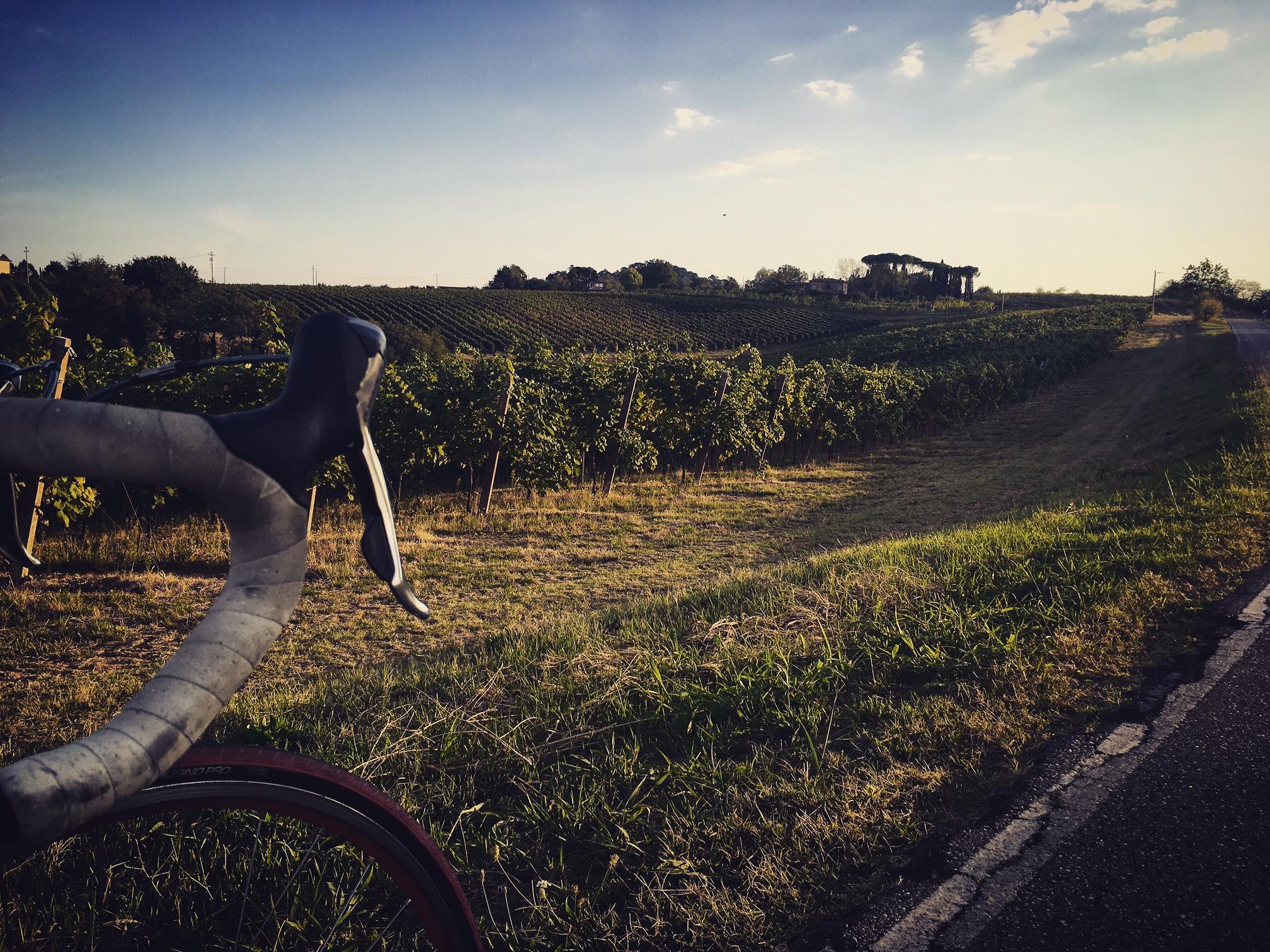 salatissimo - bike trebbiano