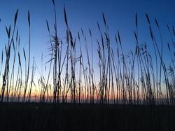 salatissimo - sunset trailrunnig