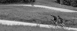 salatissimo - bike friends