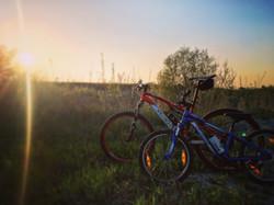 salatissimo - bike family