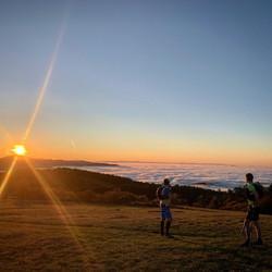 salatissimo - alba trail