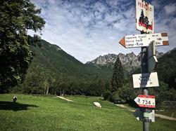 salatissimo - bike Malga Grassi