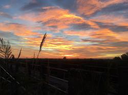 salatissimo - tramonto