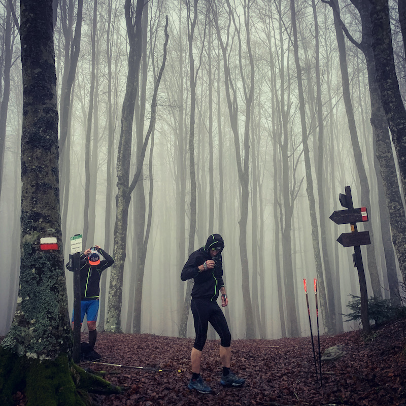 salatissimo - trail foreste casentinesi