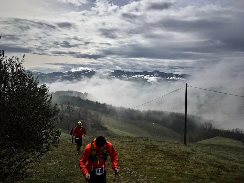 salatissimo - trail landscape