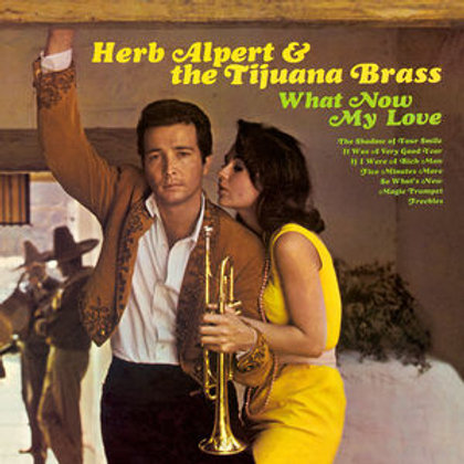 LP What Now My Love - Herp Alpert & The Tojuana Brass