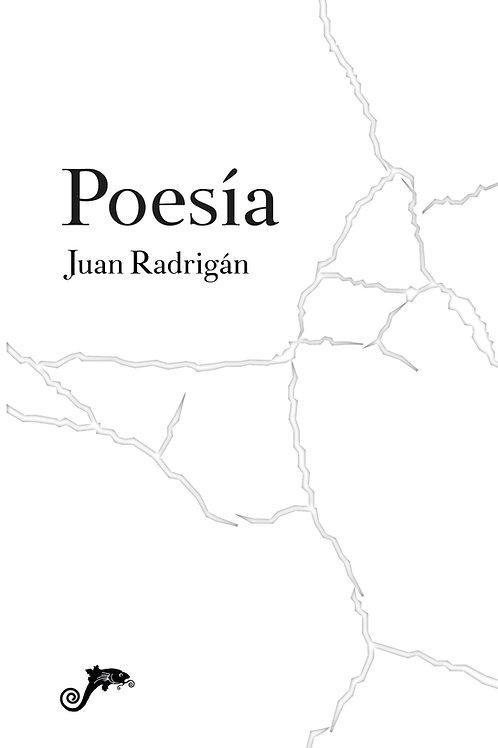 Poesía / Juan Radrigán