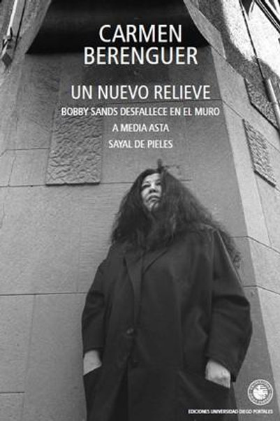 Un nuevo relieve / Carmen Berenguer