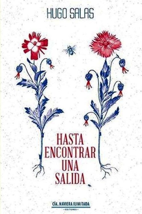 Hasta encontrar una salida / Hugo Salas