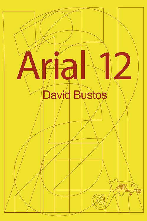 Arial 12 / David Bustos