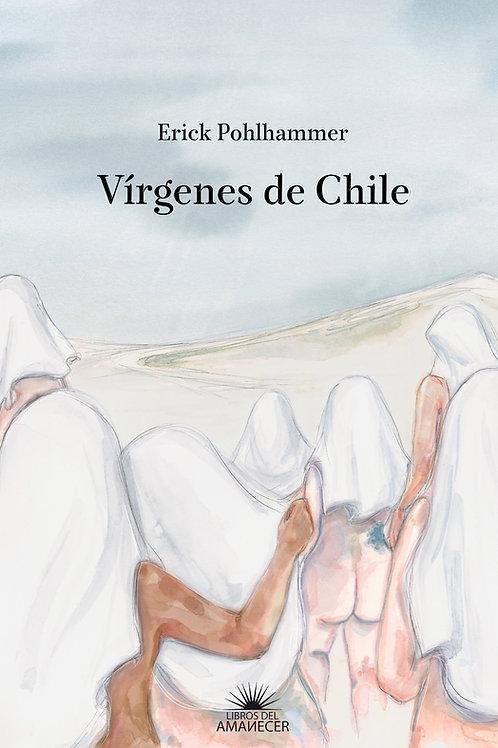 Vírgenes de Chile / Erick Pohlhammer