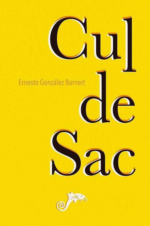 Cul de sac / Ernesto González Barnert