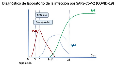 PCR COVID MADRID.png