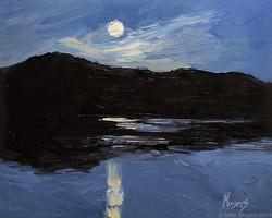 Moon Over Radnor Lake