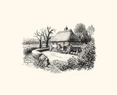 Gems of Sussex: Walderton