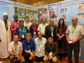Sharing the SRI West Africa results at the International Rice Congress in Singapore