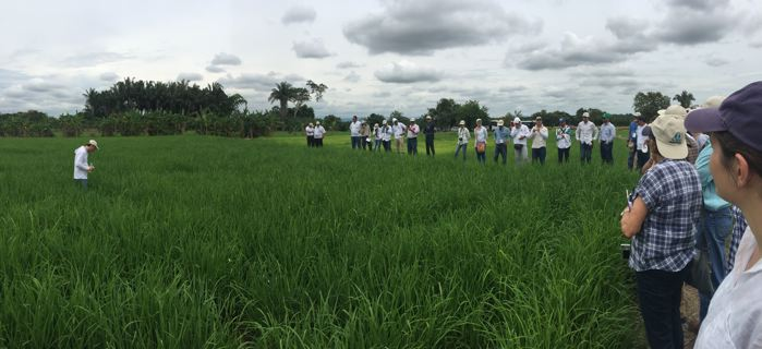 SRI field visit in tolima, Colombia