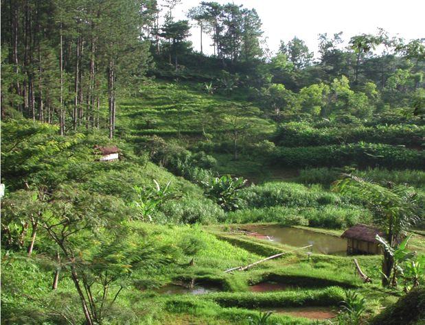 Sustainable Land Management