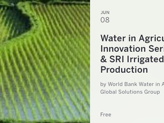 Increasing rice yields with less irrigation water