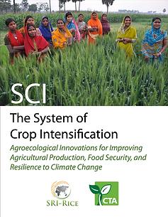 SCI Monograph