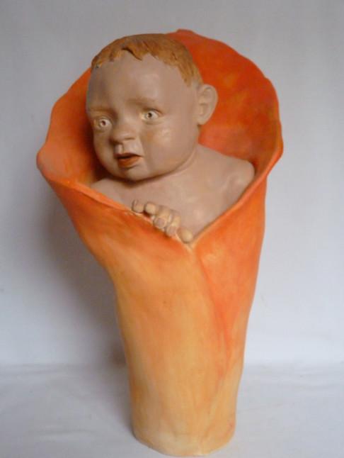 Bébé arum  34X20   300€