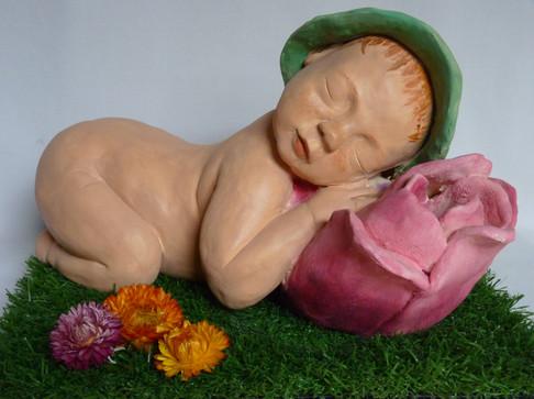 Bébé tulipe  19X32   300€
