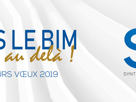 Toute l'équipe SXD vous souhaite une très belle année 2019 !