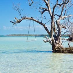 Key West sand bar