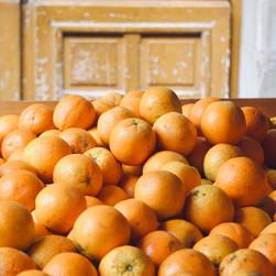 Orange Cart in Paris