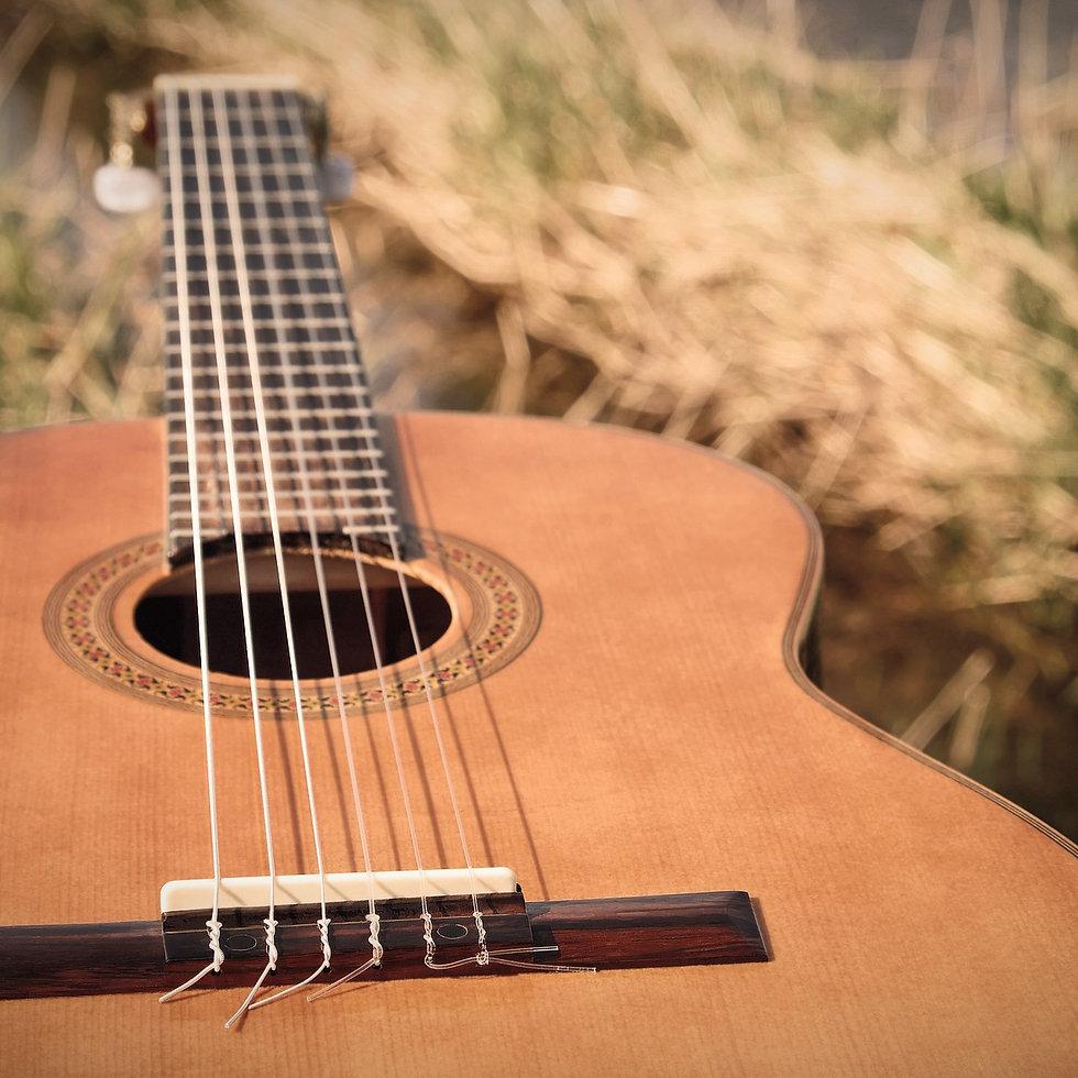 guitar-2276181_1920_edited.jpg